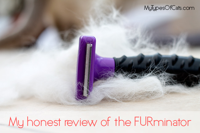 furminator-reviews-2015-2